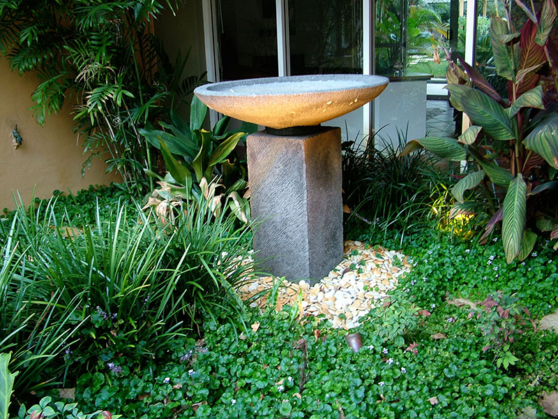 Water bowl on pedestal in nedlands tropical garden with pebbles and native violets