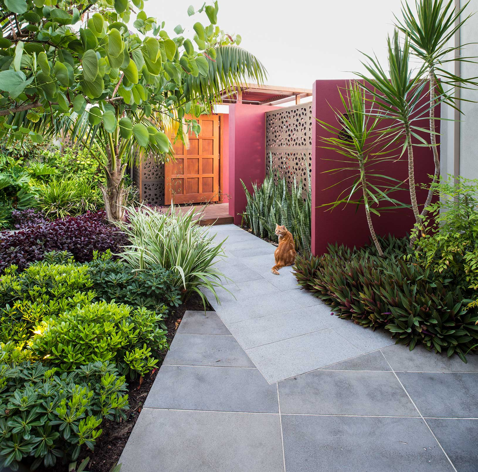 entry garden with tropical planting north beach perth with gatehouse and timber panels and granite paving