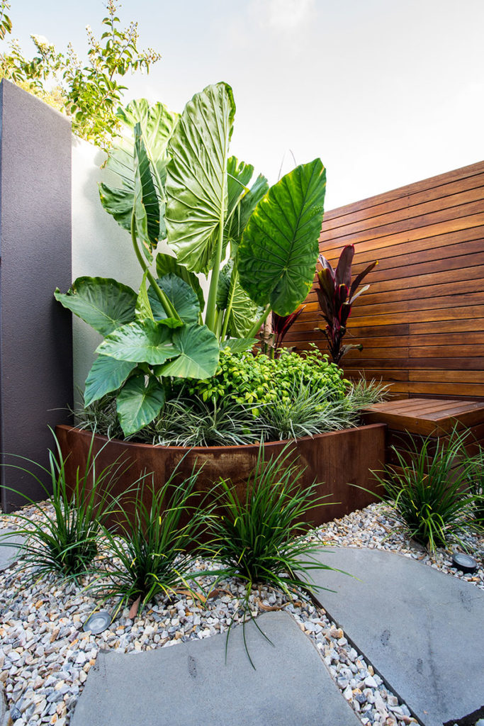 outdoor bathroom with timber and lush planting