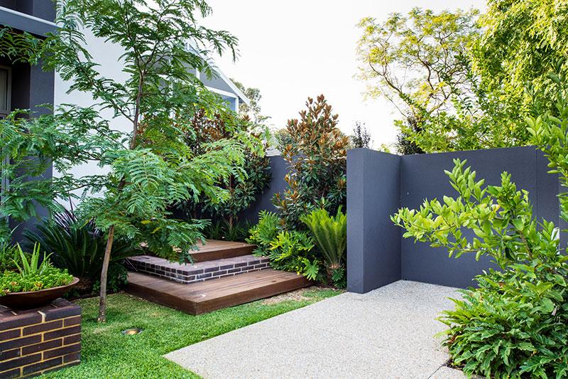 purple wall in garden